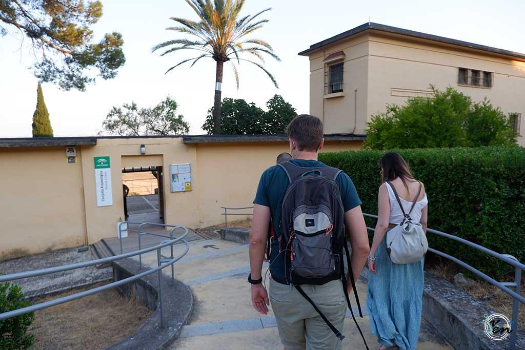 visita yacimiento medina azahara